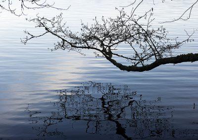 Naturstigen Grythyttan