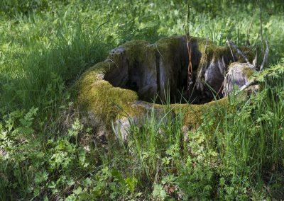 Gammal stubbe vid Herrgården i Grythyttan